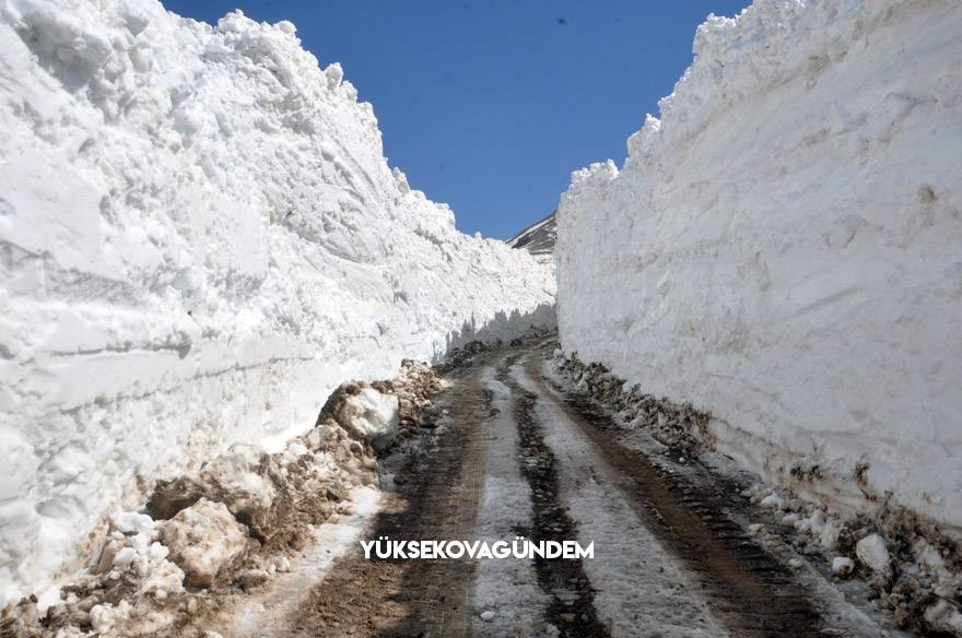 Yüksekova'da 8 metrelik kar tünelleri 12