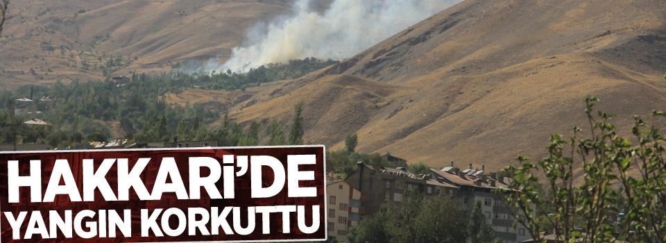 Hakkari Merzan'da çıkan yangın korkuttu