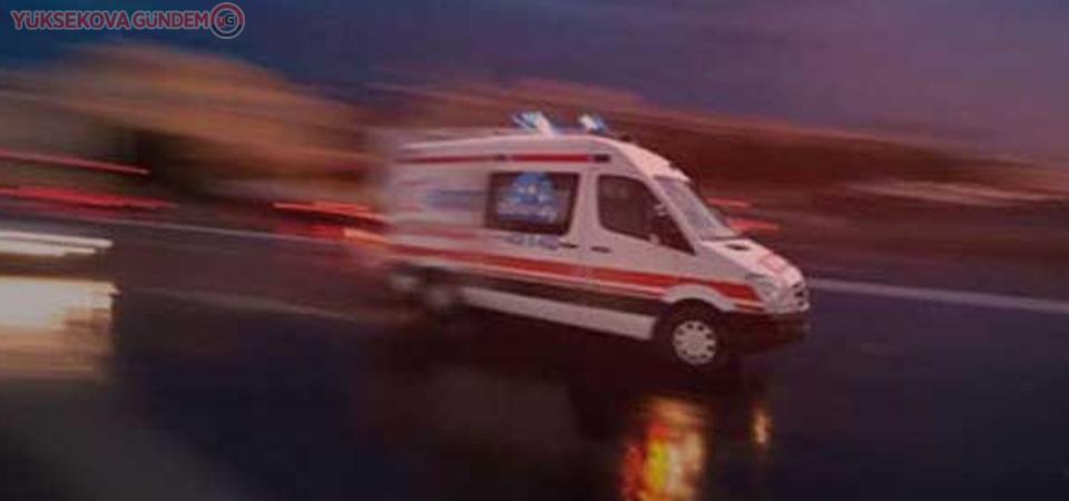 Hakkari'de dağdan düşen kişi hayatını kaybetti