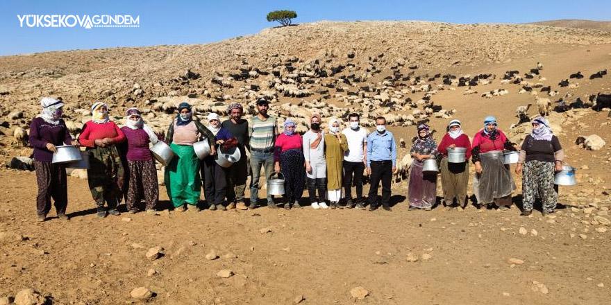 Sağlık çalışanları dağ tepe demeden çobanları aşılıyor