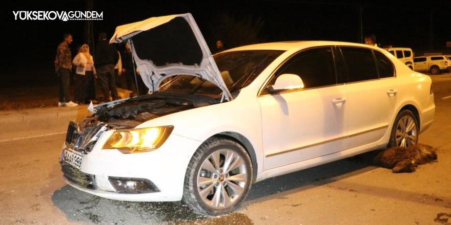 Otomobil sürüye çarptı, 6 keçi telef oldu
