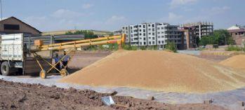 Ahlat'ta buğday alımına başlandı