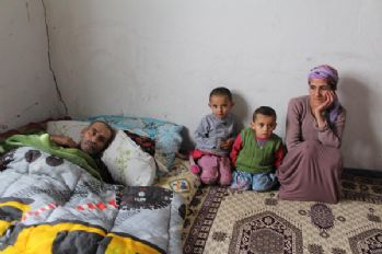 Yüksekovalı Alıcı ailesi yardım bekliyor