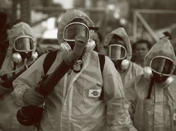 Dünya'da 33 ülkede ZİKA virüsü var