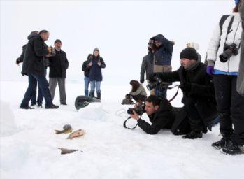 Donan göle fotoğrafçı ilgisi