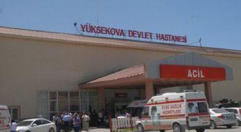 Yüksekova'da arının ısırdığı kadın hayatını kaybetti