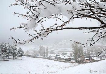 Doğu Anadolu'da kar yağışı uyarısı