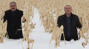 1 metreyi bulan kar çiftçiyi sevindirdi