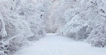 Kar geçim kaynağı oldu
