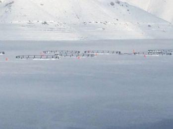 Aşırı soğuklar barajı dondurdu