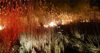 Sazlık alanda yangın çıktı