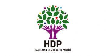 HDP'den açıklama: Eşbaşkan iki ay önce 'vekaleten' seçildi