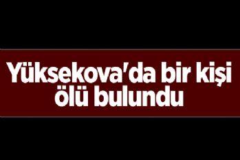 Yüksekova'da bir kişi ölü bulundu
