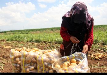 Ramazan'da kadınların ekmek mücadelesi