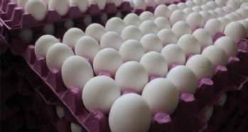 Fiyatı yarıya düşen yumurta eskisi kadar talep görmüyor
