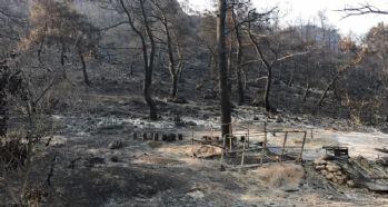 İzmir'deki yangının bilançosu ağır oldu