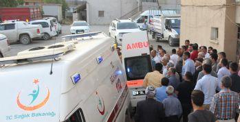 Şemdinli'de trafik kazası: 1 ölü