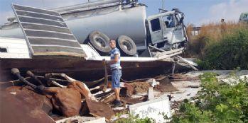 Antalya'dan Van'a gelen at yüklü kamyon kaza yaptı: 2 yaralı