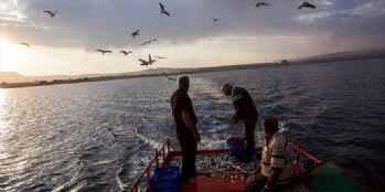 Van Gölü balıkçıları inci kefali avına başladı