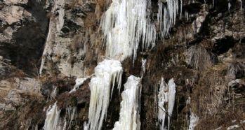 Soğuk hava şelale dondurdu