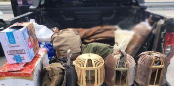 Van'da 59 keklik ele geçirildi