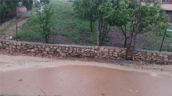 Şiddetli yağış ekinlere zarar verdi