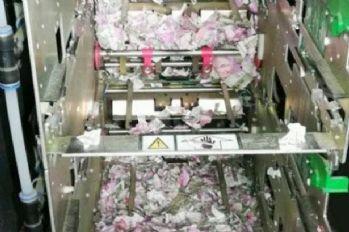 ATM'ye giren fareler yaklaşık 9 milyon TL'yi yedi