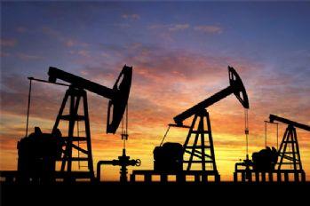 ABD'li şirket Siirt'te petrol arayacak