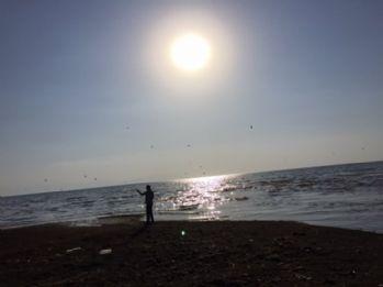 Van Gölü bataklığa dönüşüyor