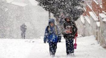 Şemdinli ve Derecik ilçelerinde okullara kar tatili