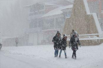 Başkale'de okullar tatil edildi