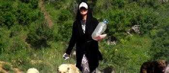 Ölüme terk edilen yavru köpeklere Eda öğretmen sahip çıktı