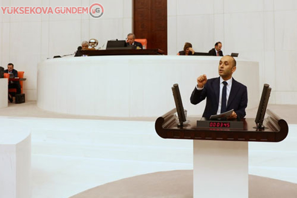 HDP'li Dede, Hakkari'deki yasakları sordu
