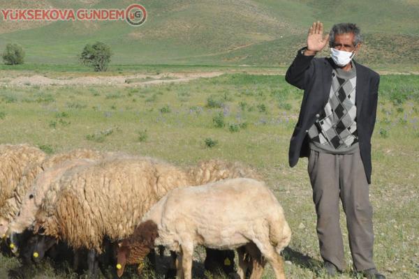 Bakan Pakdemirli'den Mehmet amcaya 20 koyun