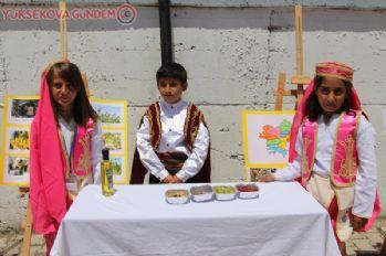 Yüksekova'da '7 Bölge, 7 Türkü' müzik dinletisi etkinliği