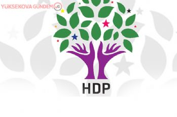 Erciş Belediyesi Yeni Eş Başkanı Belli Oldu