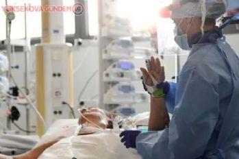 Avusturya'da COVID-19 vakaları ile ölümler hızla artıyor